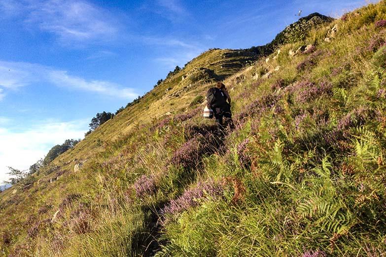 Mount Zatta climb from Semovigo